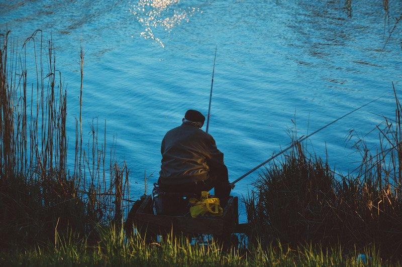 Neurorecruiting – Oder was ein toter Fisch mit Personaldiagnostik zu tun hat